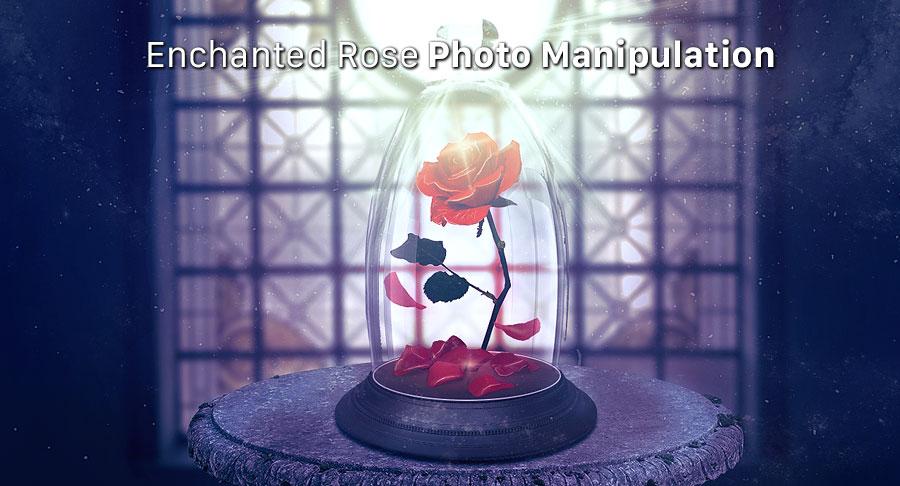 نحوه ایجاد یک دستکاری عکس جادویی گل رُز زرق و برق دار در فتوشاپ