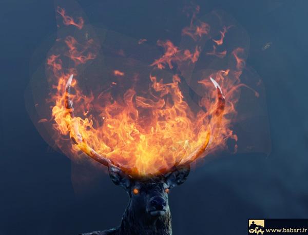 ترکیب تصاویر و ایجاد شعله های فانتزی بر روی یک گوزن